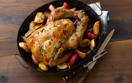 Turkey Cooking Help Links