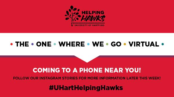10th Annual Helping Hawks Volunteer Day Goes Virtual